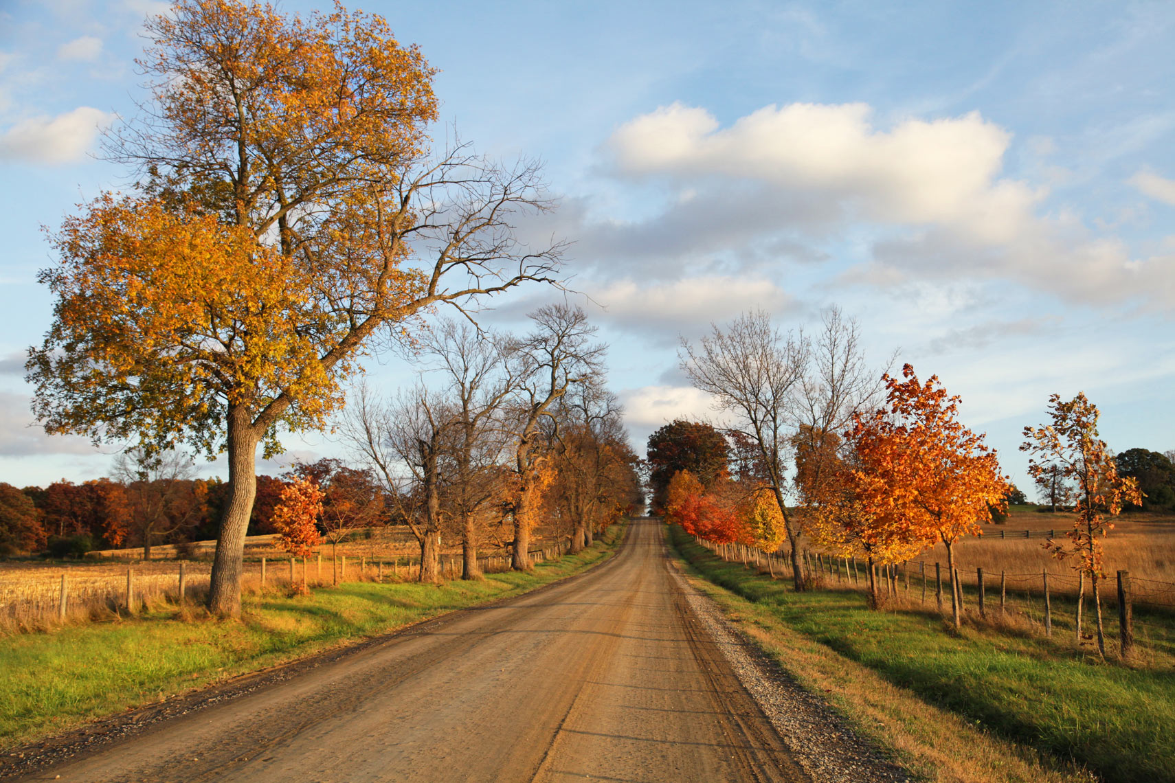 Fall-Dirt-Road-Web
